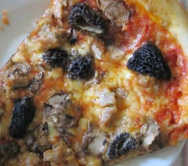 morel pizza 003